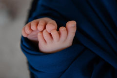 Pés recém-nascidos do bebê Foto de Stock