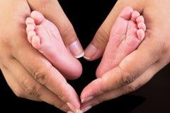 Pés recém-nascidos do bebê nas mãos Fotografia de Stock