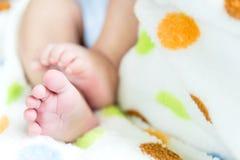 Pés recém-nascidos do bebê nas mãos da mamã e do paizinho Fotos de Stock