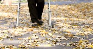 Pés superiores da mulher que andam com o caminhante no parque do outono filme