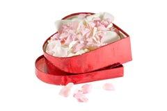 Pétalas cor-de-rosa e brancas vivas na caixa do coração Imagem de Stock Royalty Free