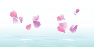 Pétalas cor-de-rosa que caem na água Pétalas de Sakura Vetor Fotografia de Stock Royalty Free