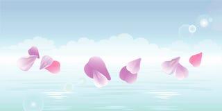 Pétalas cor-de-rosa que caem na água Pétalas de Sakura Vetor Fotografia de Stock