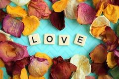Pétalas cor-de-rosa secadas que cercam o amor das palavras imagem de stock