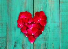 Pétalas cor-de-rosa vermelhas na forma do coração na porta de madeira azul afligida da cerceta antiga fotografia de stock royalty free