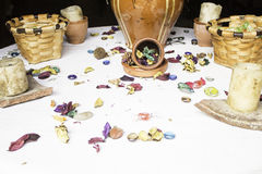 Pétalas da flor Fotos de Stock Royalty Free