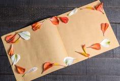 Pétalas da flor da carta de amor foto de stock royalty free