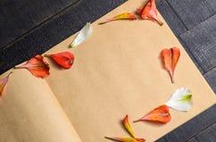 Pétalas da flor da carta de amor imagens de stock royalty free
