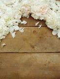 Pétalas da peônia no fundo de madeira Fotografia de Stock