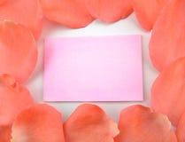 Pétalas de Rosa com cartão fotos de stock royalty free