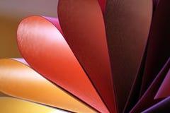 pétalas do cartão colorido Fotografia de Stock Royalty Free