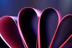 pétalas do cartão cor-de-rosa Imagens de Stock Royalty Free