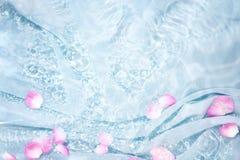 Pétale de rose dans l'eau Image libre de droits
