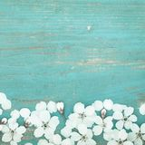 Pétales blancs de Cherry On Old Wooden Table image stock