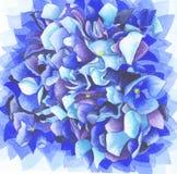 Pétales bleus de fleur d'hortensia Photographie stock libre de droits