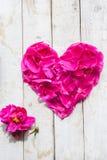 Pétales dans la forme de coeur Photographie stock