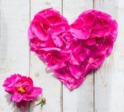 Pétales dans la forme de coeur Photographie stock libre de droits