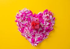 Pétales dans la forme de coeur avec le boîte-cadeau rouge Photographie stock