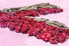 Pétales de fleur Images libres de droits