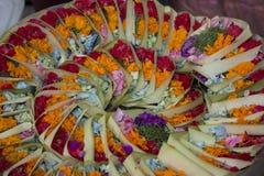 Pétales de fleur Photographie stock