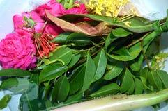 Pétales de fleur dans l'eau avec l'épuisette d'or Photo stock