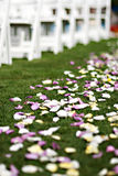 Pétales de fleur de mariage Photographie stock
