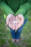 Les mains des pétales Image stock