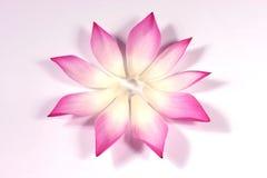 Pétales de lotus avec son bourgeon Images libres de droits