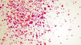 Pétales de rose Image stock