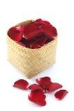 Pétales de rose dans le panier d'isolement sur le fond blanc Photographie stock libre de droits