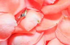 Pétales de rose et anneau de mariage Image libre de droits