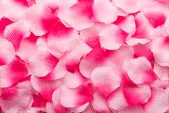 Pétales de Rose roses 01 Photos libres de droits