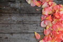 Pétales de rose roses sur le fond de la vieille surface en bois Copiez l'espace Photo libre de droits