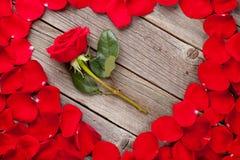 Pétales de rose rouges coeur et fleur Photos stock