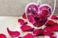 Pétales de rose rouges dans le vase à coeur sur le fond en bois Images stock