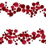 Pétales de rose rouges et roses Photo stock
