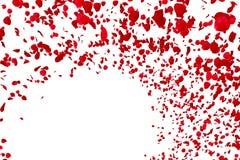 Pétales de rose rouges volant avec le vortex le fond, l'amour et le Saint Valentin blancs Image libre de droits