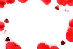 Pétales de rose sur le fond blanc pour le jour du ` s de femmes, le 8 mars Photographie stock