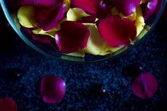 Pétales de roses rouges et jaunes dans le bol en verre Photo libre de droits