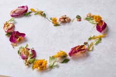 Pétales en forme de coeur d'isolement sur le fond blanc, vue supérieure, plan rapproché, foyer sélectif Photo stock