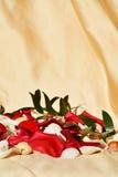 Pétales et feuilles, symbole de l'amour éternel Photographie stock
