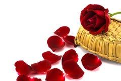 Pétales et roses rouges sur un fond blanc Photos stock