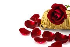 Pétales et roses rouges sur un fond blanc Image stock