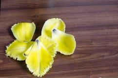 Pétales jaunes d'une tulipe sur le plan rapproché en bois de texture photos libres de droits