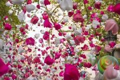 Pétales roses d'amour accrochant et se déplaçant le secteur de Gracia, Barcelone Photos libres de droits