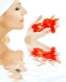Pétales rouges dans le beau femme Images stock