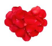 Pétales rouges de coeur des roses photo stock