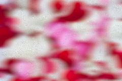 Pétalos color de rosa borrosos abstractos imágenes de archivo libres de regalías
