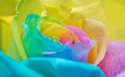 Pétalos color de rosa del arco iris imágenes de archivo libres de regalías