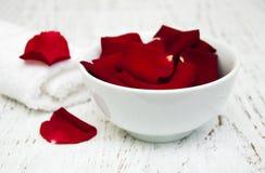 Pétalos color de rosa rojos Fotografía de archivo